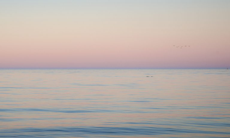 Blick bei Sonnenuntergang nach Osten. Das Gegenabendrot färbt den Himmel rosa. Die Wellen spiegeln je nach Neigung Rosa oder Blau.