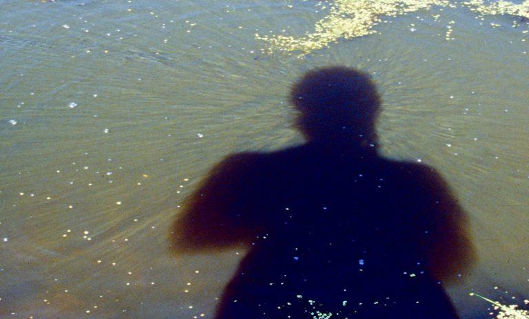 Siehst du die feinen Sonnenstrahlen im trüben Wasser, die den Kopfschatten umkränzen?