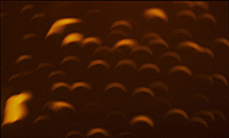 Bei einer Sonnenfinsternis ist die Sonne eine schmale Sichel. Und die Lichtflecken sehen so aus!